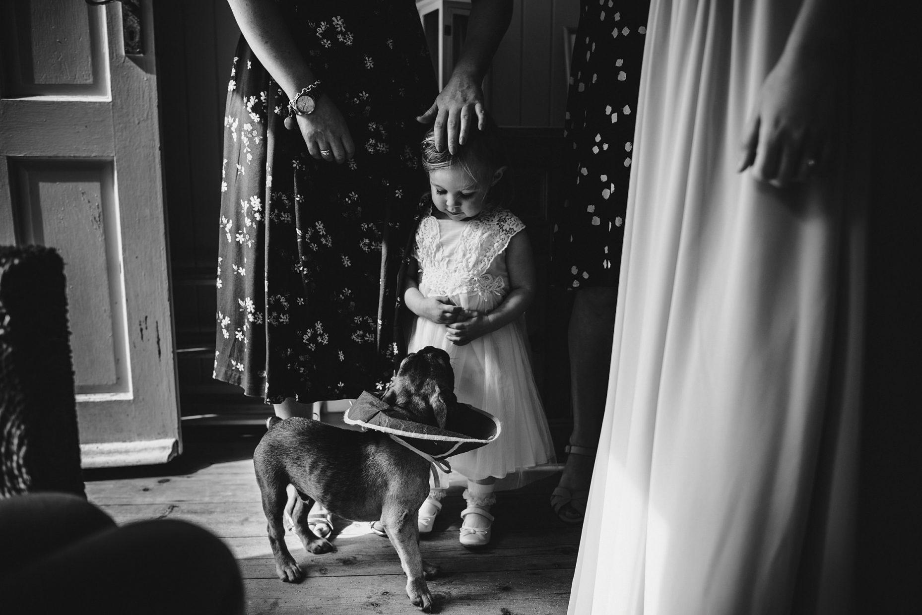 flower girl dog wedding photo